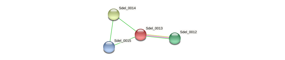 Sdel_0013 protein (Sulfurospirillum deleyianum) - STRING interaction network
