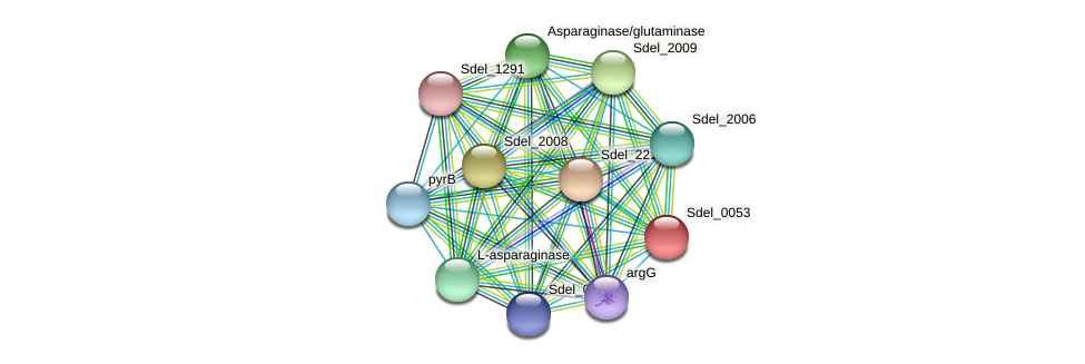 Sdel_0053 protein (Sulfurospirillum deleyianum) - STRING interaction network