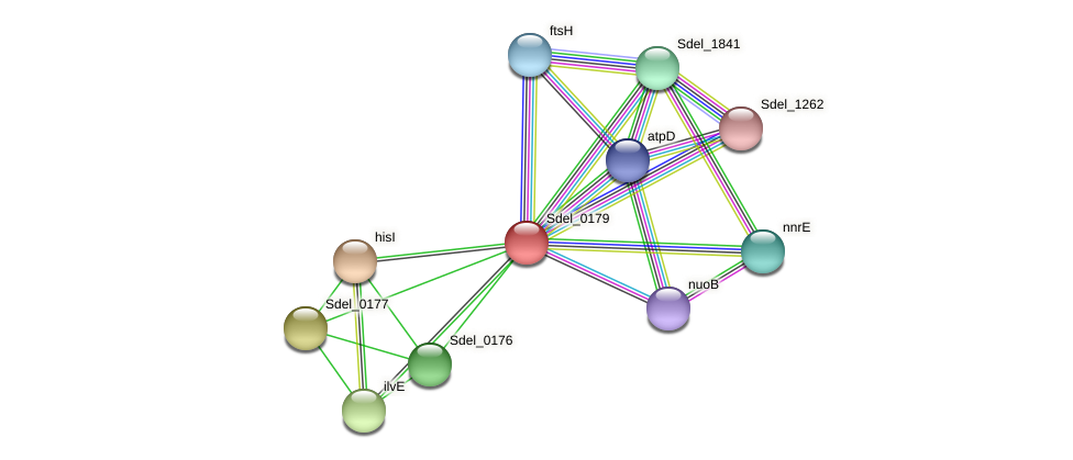 Sdel_0179 protein (Sulfurospirillum deleyianum) - STRING interaction network