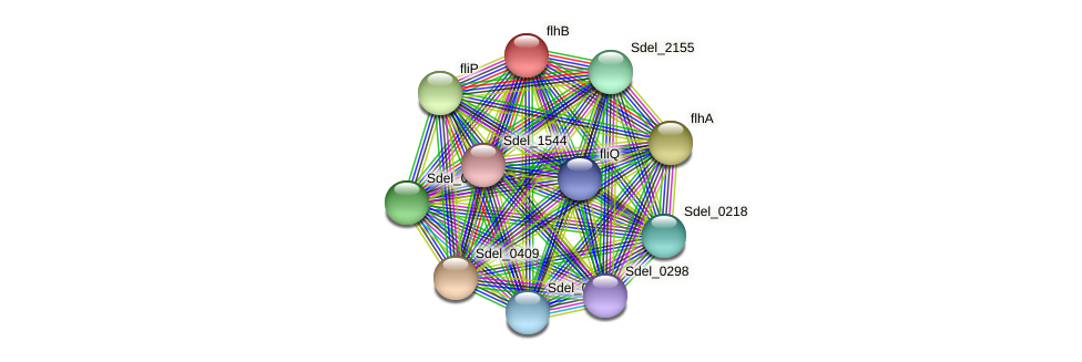 Sdel_0240 protein (Sulfurospirillum deleyianum) - STRING interaction network