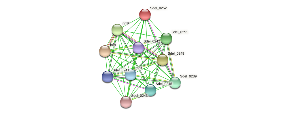 Sdel_0252 protein (Sulfurospirillum deleyianum) - STRING interaction network