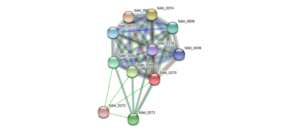 Sdel_0270 protein (Sulfurospirillum deleyianum) - STRING interaction network