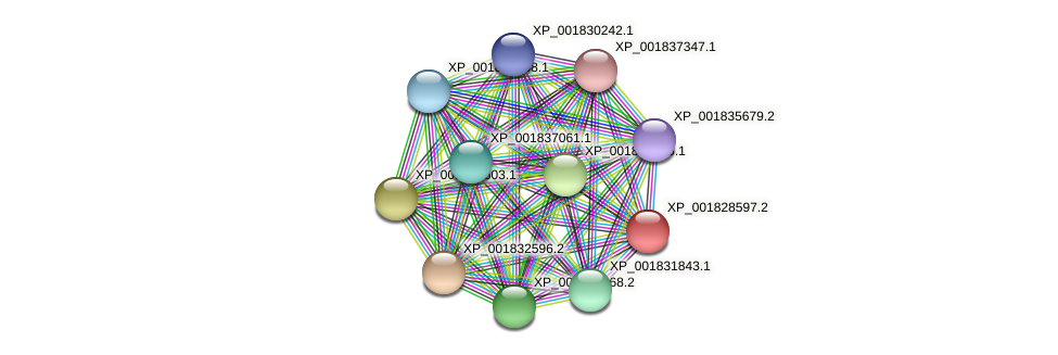 CC1G_10268 protein (Coprinopsis cinerea) - STRING interaction network
