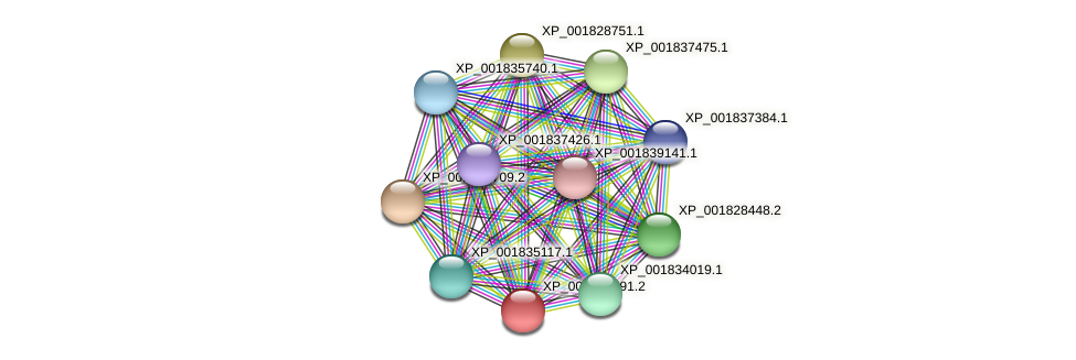 CC1G_06777 protein (Coprinopsis cinerea) - STRING interaction network