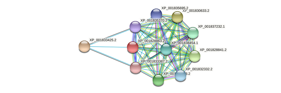 CC1G_03657 protein (Coprinopsis cinerea) - STRING interaction network