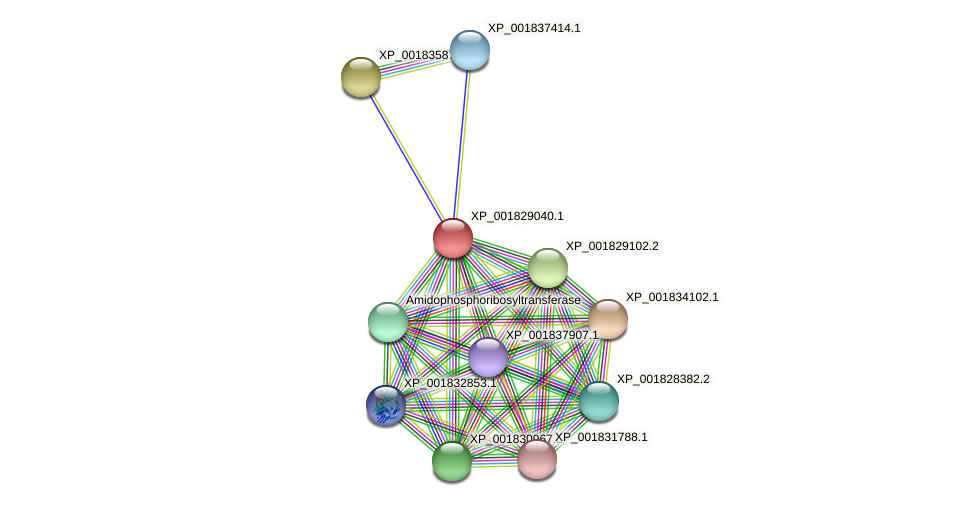 CC1G_01720 protein (Coprinopsis cinerea) - STRING interaction network