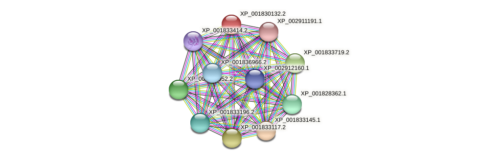 CC1G_04565 protein (Coprinopsis cinerea) - STRING interaction network