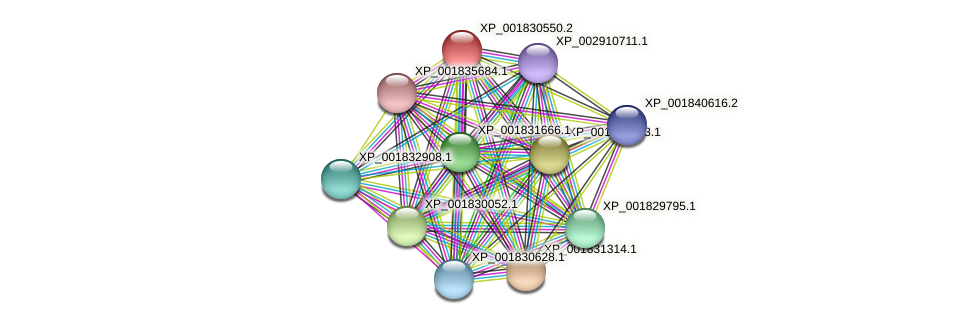 CC1G_06816 protein (Coprinopsis cinerea) - STRING interaction network