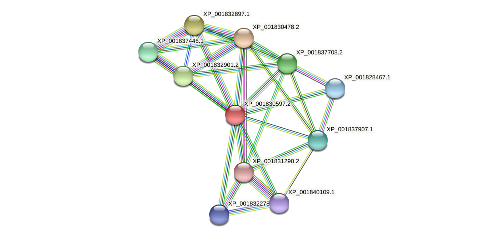 CC1G_06863 protein (Coprinopsis cinerea) - STRING interaction network