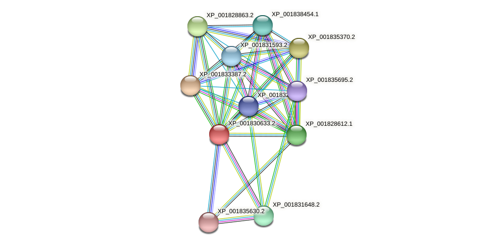 CC1G_06899 protein (Coprinopsis cinerea) - STRING interaction network