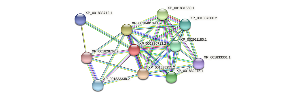CC1G_03250 protein (Coprinopsis cinerea) - STRING interaction network