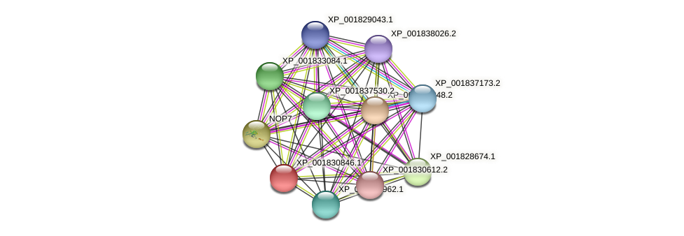 CC1G_02297 protein (Coprinopsis cinerea) - STRING interaction network