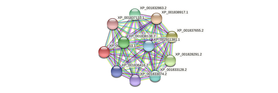 CC1G_02354 protein (Coprinopsis cinerea) - STRING interaction network
