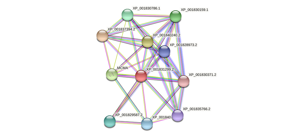 CC1G_00846 protein (Coprinopsis cinerea) - STRING interaction network