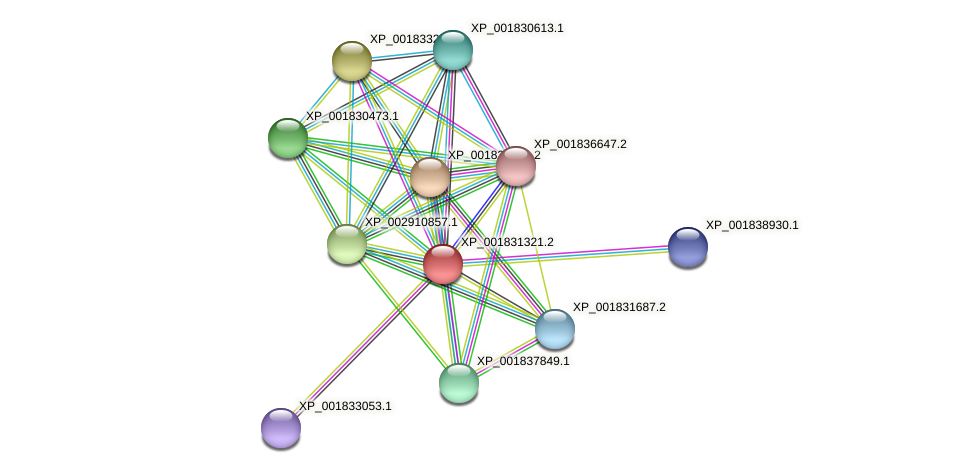 CC1G_00868 protein (Coprinopsis cinerea) - STRING interaction network