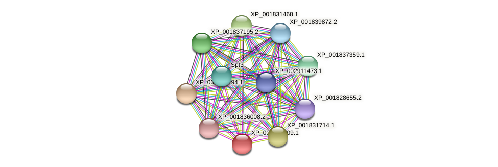 CC1G_09038 protein (Coprinopsis cinerea) - STRING interaction network