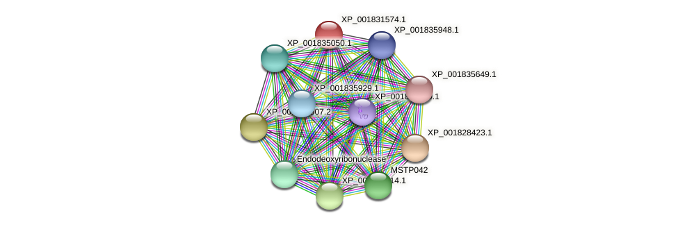 CC1G_11571 protein (Coprinopsis cinerea) - STRING interaction network