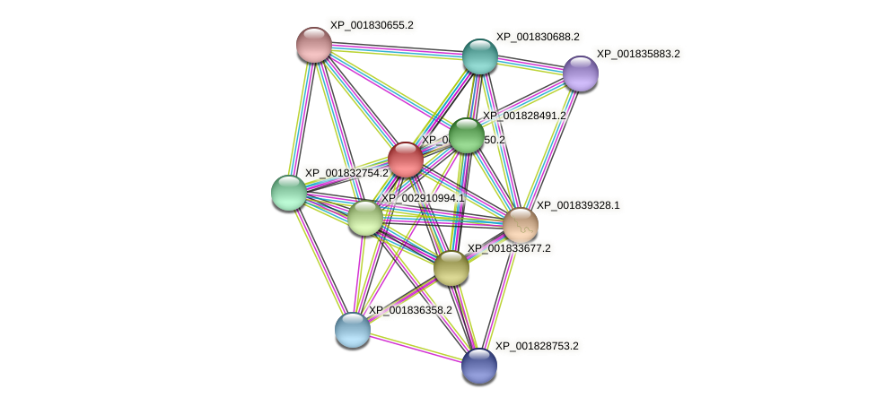 CC1G_08354 protein (Coprinopsis cinerea) - STRING interaction network