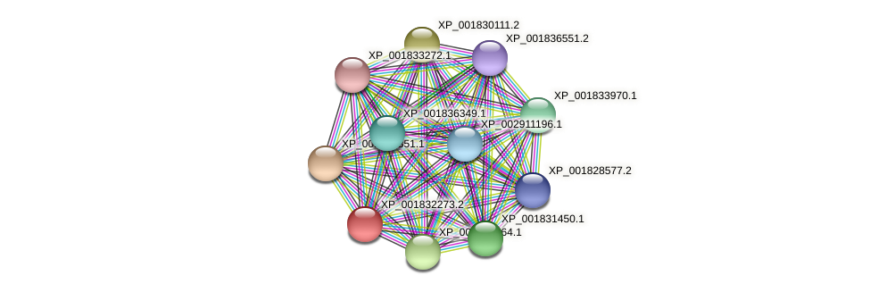 CC1G_02535 protein (Coprinopsis cinerea) - STRING interaction network