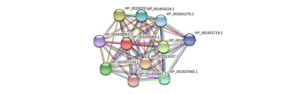 CC1G_01067 protein (Coprinopsis cinerea) - STRING interaction network