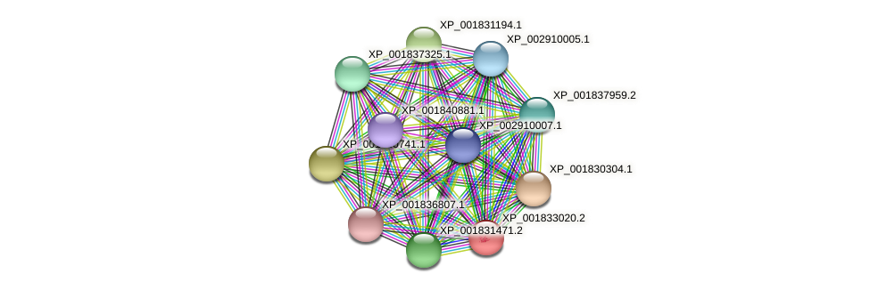 CC1G_01082 protein (Coprinopsis cinerea) - STRING interaction network