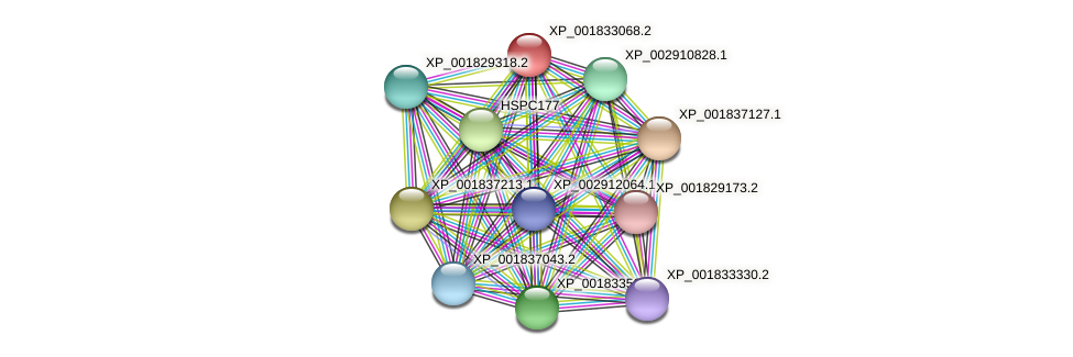 CC1G_01130 protein (Coprinopsis cinerea) - STRING interaction network