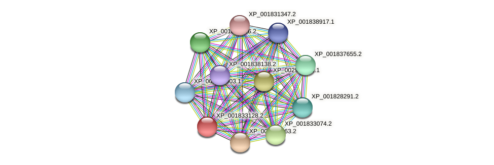 CC1G_01190 protein (Coprinopsis cinerea) - STRING interaction network