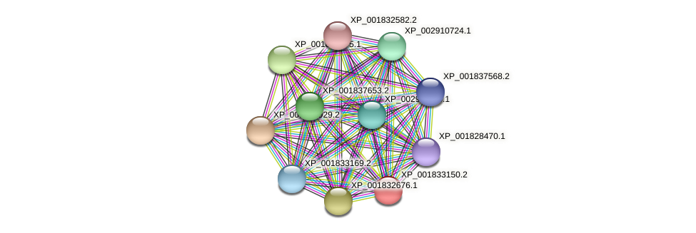 CC1G_01212 protein (Coprinopsis cinerea) - STRING interaction network