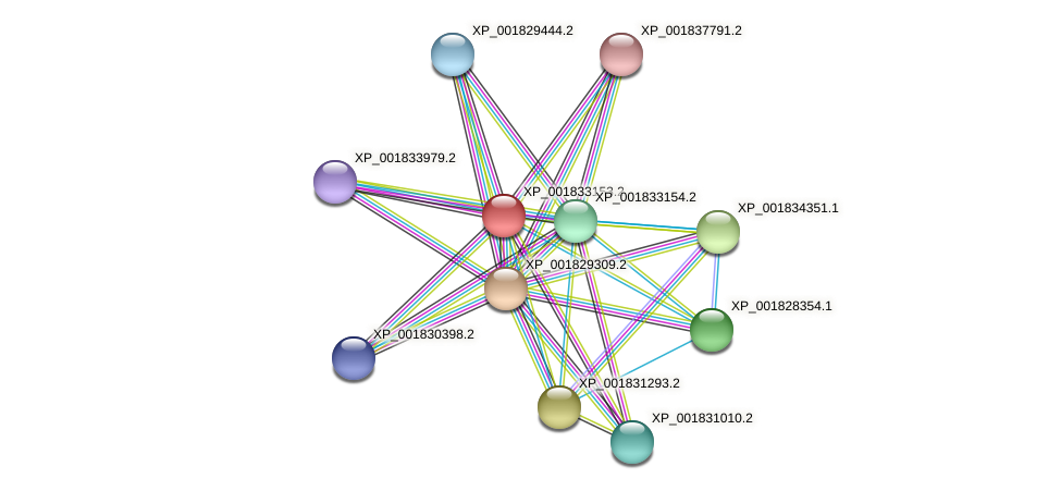 CC1G_01215 protein (Coprinopsis cinerea) - STRING interaction network
