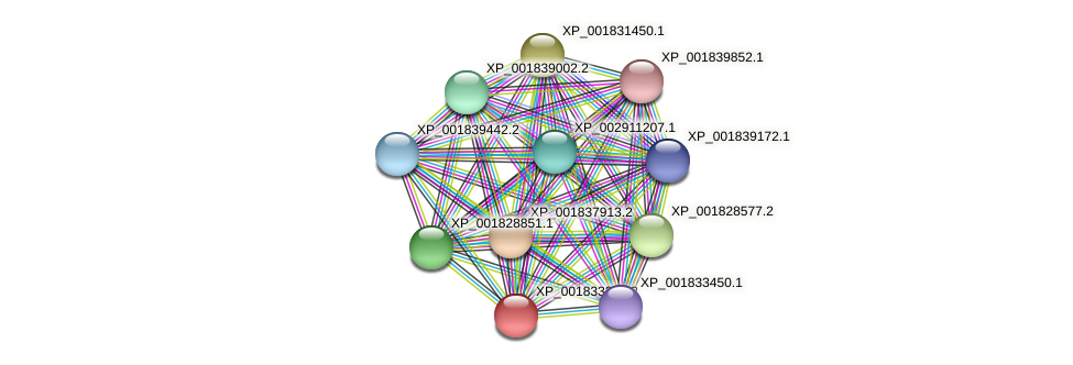 CC1G_04270 protein (Coprinopsis cinerea) - STRING interaction network