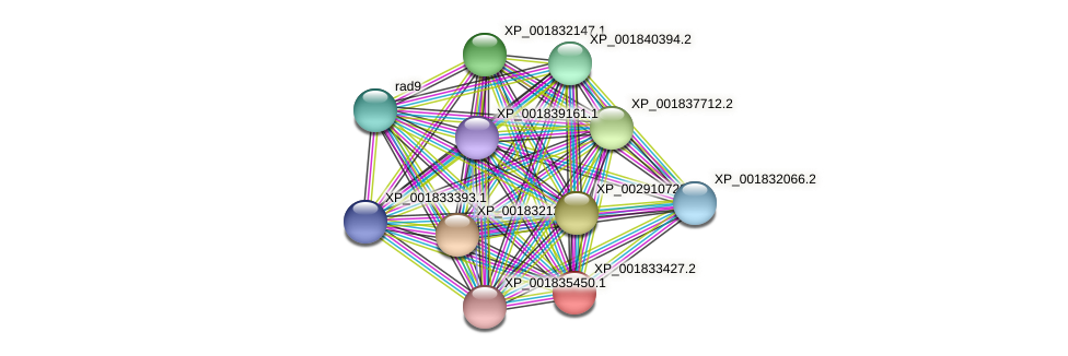 CC1G_05127 protein (Coprinopsis cinerea) - STRING interaction network
