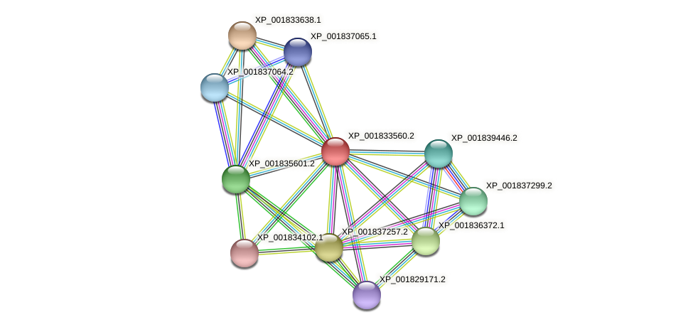 CC1G_11766 protein (Coprinopsis cinerea) - STRING interaction network