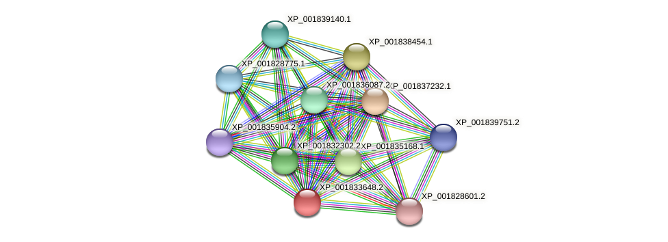 CC1G_03865 protein (Coprinopsis cinerea) - STRING interaction network