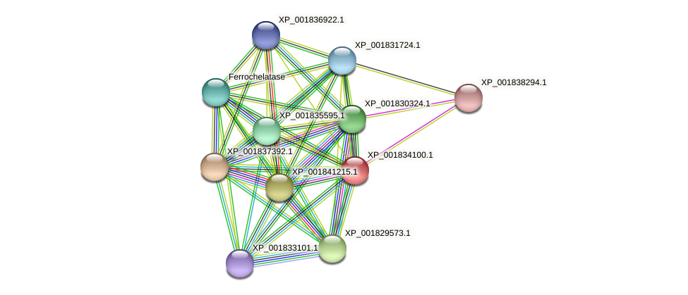 CC1G_08731 protein (Coprinopsis cinerea) - STRING interaction network