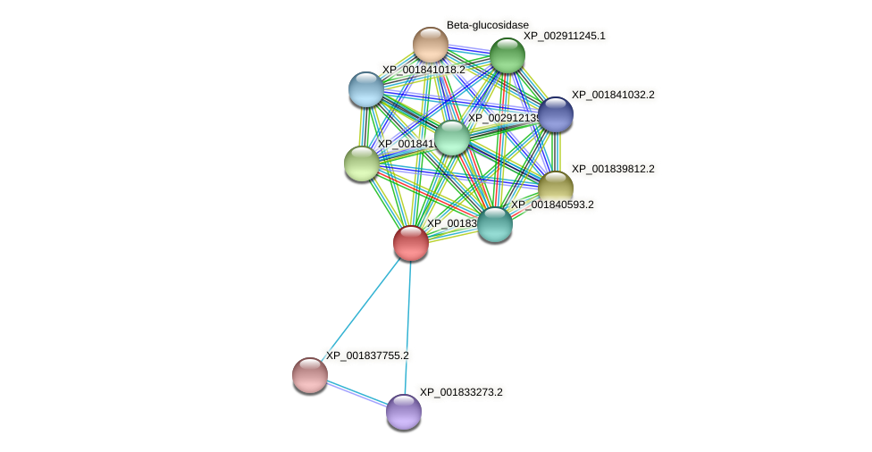 CC1G_05413 protein (Coprinopsis cinerea) - STRING interaction network