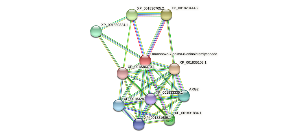 CC1G_06303 protein (Coprinopsis cinerea) - STRING interaction network