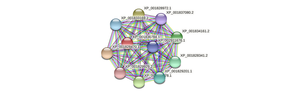 CC1G_04097 protein (Coprinopsis cinerea) - STRING interaction network