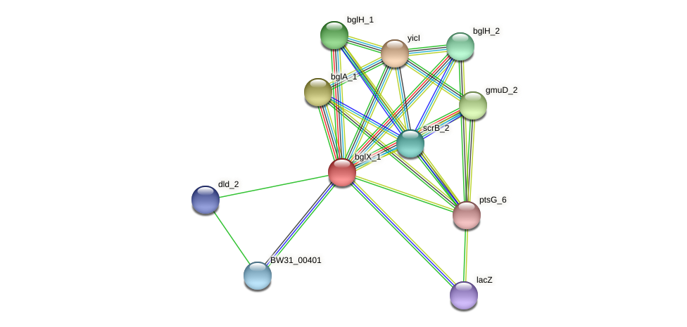 BW31_00400 protein (Pantoea agglomerans) - STRING interaction network