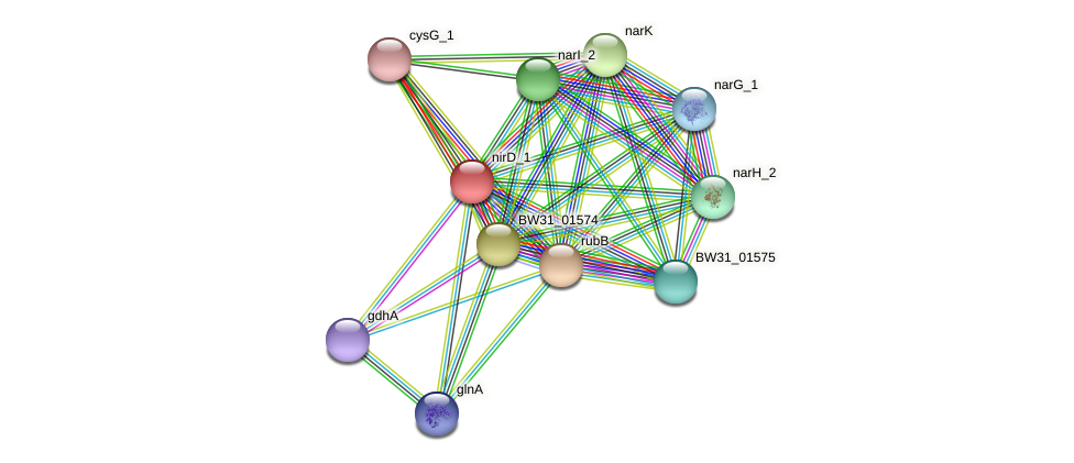 nirD protein (Pantoea agglomerans) - STRING interaction network