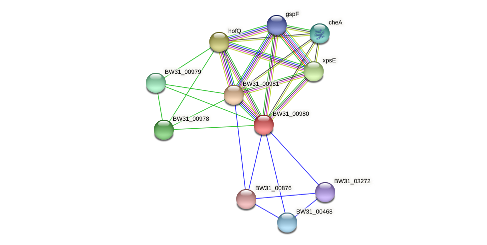 BW31_00980 protein (Pantoea agglomerans) - STRING interaction network