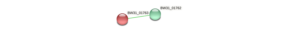 BW31_01763 protein (Pantoea agglomerans) - STRING interaction network