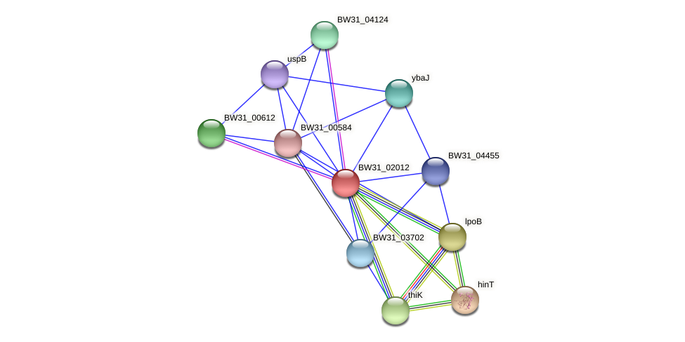 BW31_02012 protein (Pantoea agglomerans) - STRING interaction network