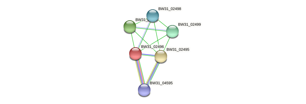 BW31_02496 protein (Pantoea agglomerans) - STRING interaction network