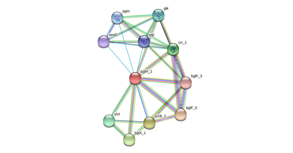 BW31_02653 protein (Pantoea agglomerans) - STRING interaction network