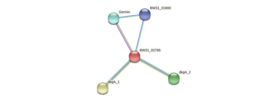 BW31_02766 protein (Pantoea agglomerans) - STRING interaction network