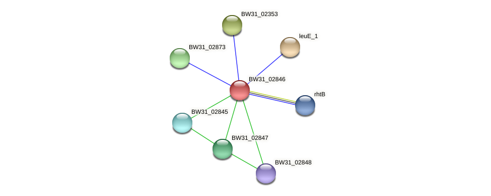 BW31_02846 protein (Pantoea agglomerans) - STRING interaction network