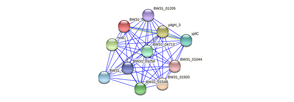 BW31_03441 protein (Pantoea agglomerans) - STRING interaction network