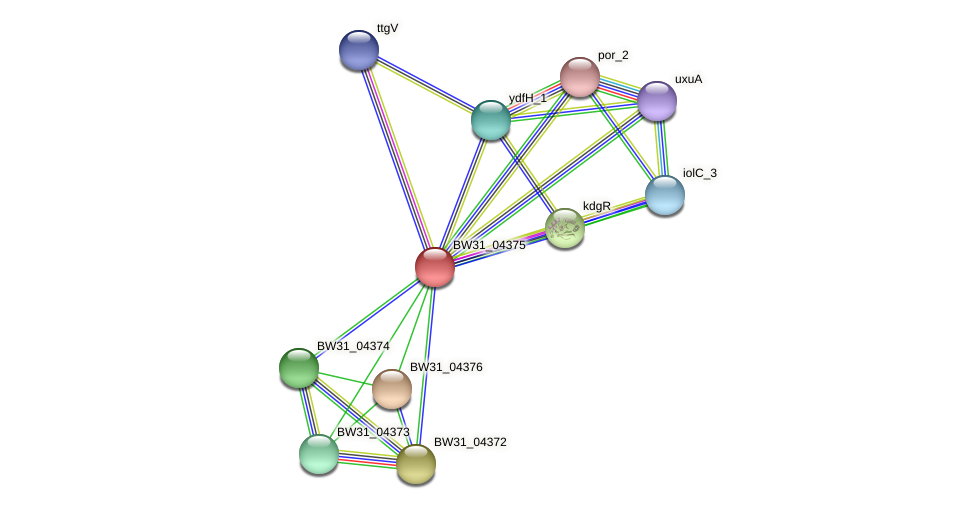 BW31_04375 protein (Pantoea agglomerans) - STRING interaction network