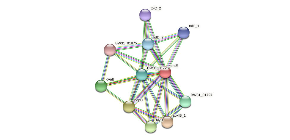 BW31_04695 protein (Pantoea agglomerans) - STRING interaction network