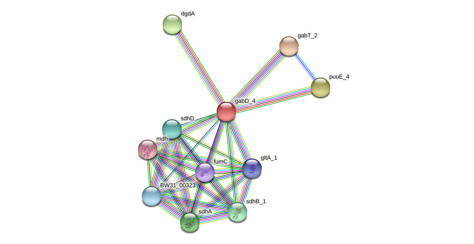 BW31_04891 protein (Pantoea agglomerans) - STRING interaction network